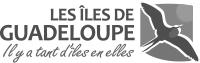Comité du tourisme des îles de Guadeloupe